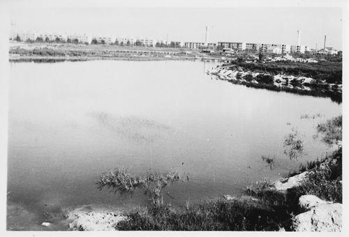 1964年 長居公園大池