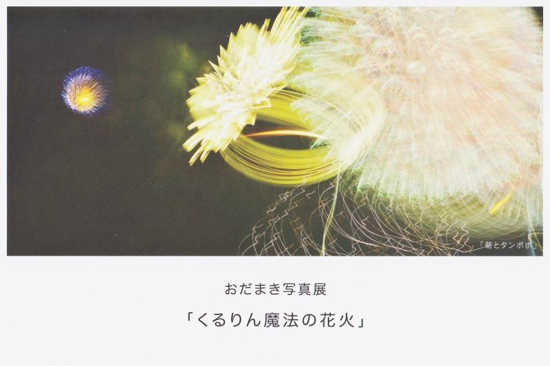Img_0001_800x533